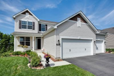 Shakopee Single Family Home For Sale: 7951 Spring Lake Drive