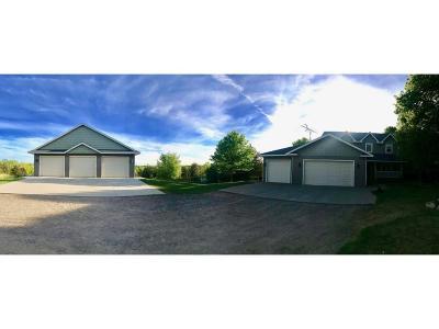 Stearns County Single Family Home For Sale: 21515 19th Avenue E