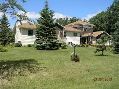 Pillager Single Family Home For Sale: 4350 SW Bigwater Drive SW