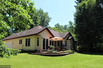 Pine City Single Family Home For Sale: 19301 Highwood Shores Road