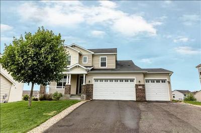 Lakeville Single Family Home For Sale: 19745 Hazel Nut Avenue