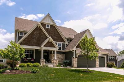 Wayzata, Plymouth Single Family Home For Sale: 5840 Dunkirk Lane N