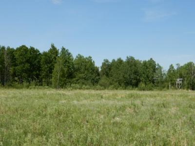 Sturgeon Lake Residential Lots & Land For Sale: Xxx Jones Rd