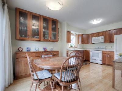 Eden Prairie Single Family Home For Sale: 10211 Lee Drive