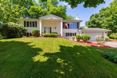 Minnetrista Single Family Home For Sale: 1291 Morningview Drive