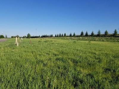 Albany Residential Lots & Land For Sale: 112 Par Drive