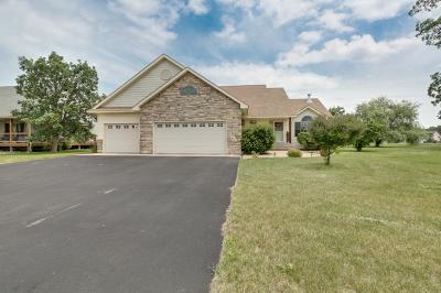 North Branch Single Family Home For Sale: 38269 Everton Avenue