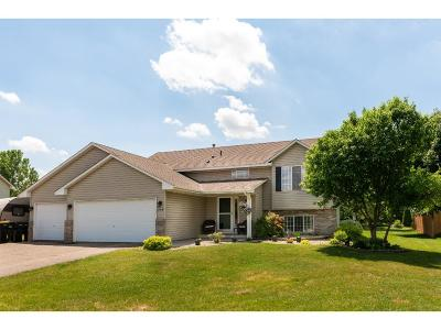 Shakopee Single Family Home For Sale: 164 Hickory Lane E