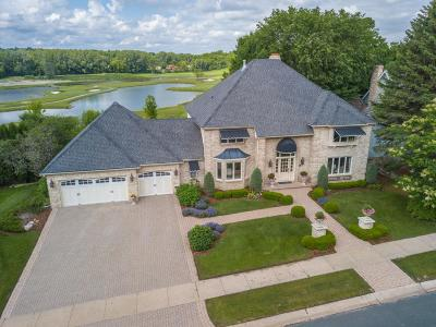Eden Prairie Single Family Home For Sale: 10932 Mount Curve Road