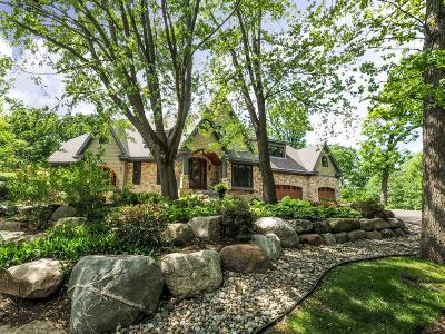 Golden Valley Single Family Home For Sale: 245 Ski Hill Road