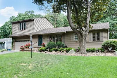 Minnetonka Single Family Home For Sale: 4848 Arlington Drive