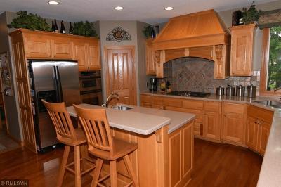 Ham Lake Single Family Home For Sale: 14645 Bataan Street NE