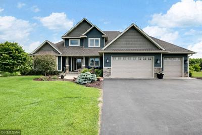 Chisago County Single Family Home For Sale: 10261 245th Street
