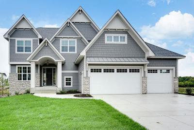 Wayzata, Plymouth Single Family Home For Sale: 5195 Yellowstone Lane N