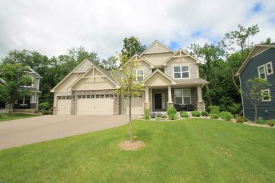 Wayzata, Plymouth Single Family Home For Sale: 16810 51st Place N