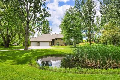Chanhassen Single Family Home For Sale: 9700 Flintlock Trail
