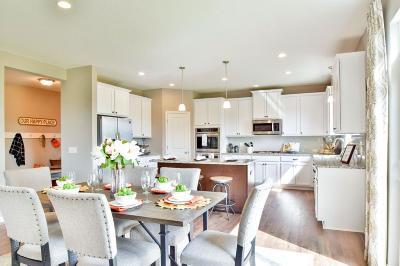 Wayzata, Plymouth Single Family Home For Sale: 19010 42nd Avenue N