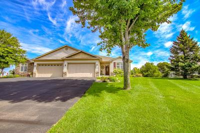 New Richmond Single Family Home For Sale: 1437 Wood Duck Lane