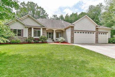 North Branch Single Family Home For Sale: 4957 381st Lane