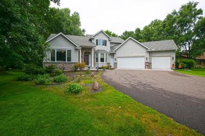 Chisago County, Washington County Single Family Home For Sale: 9977 Park Crossing