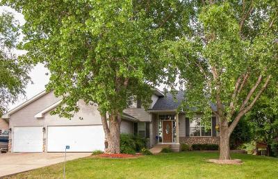 Faribault Single Family Home For Sale: 4063 Wells Lake Way