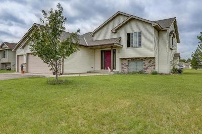 Sartell Single Family Home For Sale: 2289 Utah Road