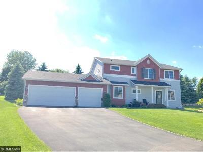 Carver, Eden Prairie, Chanhassen, Chaska Single Family Home For Sale: 2020 Amberg Court