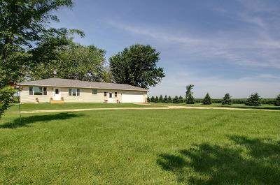 Single Family Home For Sale: 49609 County 1 Boulevard