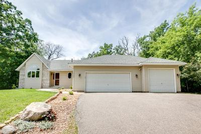 Prior Lake Single Family Home For Sale: 15504 Omega Trail SE