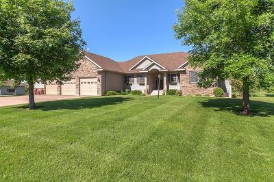 Stearns County Single Family Home For Sale: 21819 53rd Avenue