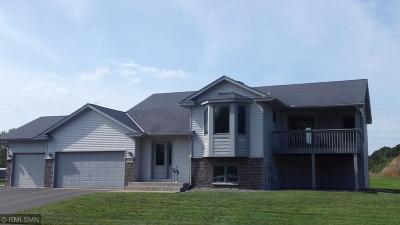 East Bethel Single Family Home For Sale: 1080 Fillmore Circle NE