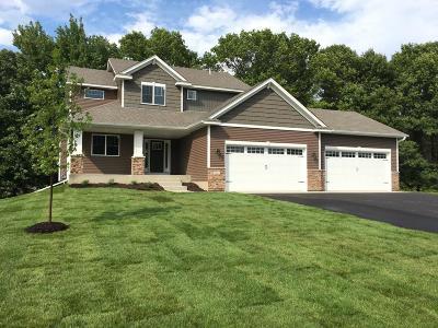 Ham Lake Single Family Home For Sale: 3543 172nd Lane NE