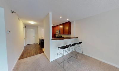Minneapolis Condo/Townhouse For Sale: 48 Groveland Terrace #B304