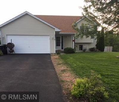Ramsey Single Family Home For Sale: 14210 Vanadium Street NW