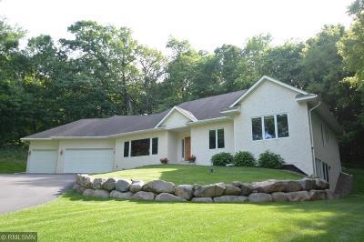 Eden Prairie Single Family Home For Sale: 6366 Chandler Court