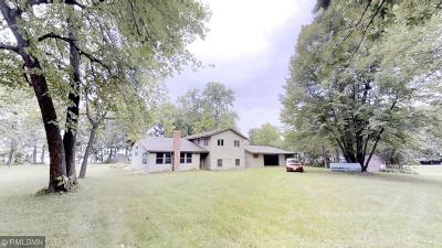 Kandiyohi County Single Family Home For Sale: 21630 62nd Street NW