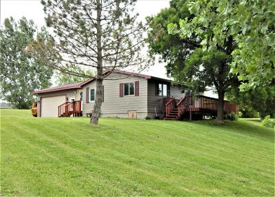 Pine City Single Family Home Contingent: 11163 N Frontage Road