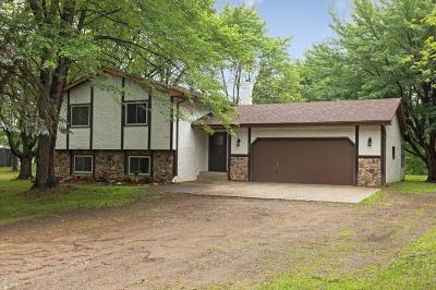 Ham Lake Single Family Home For Sale: 4515 155th Avenue NE