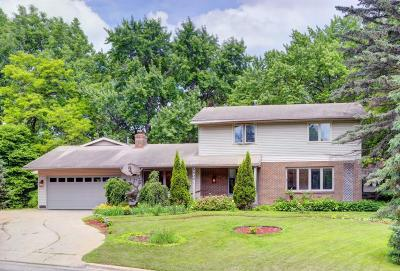 Edina Single Family Home For Sale: 5400 Valley Lane