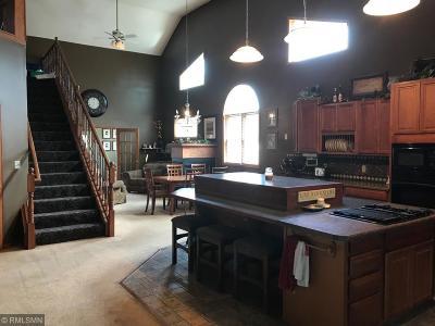 South Saint Paul Single Family Home For Sale: 411 11th Avenue S