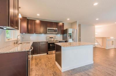 Maple Grove Single Family Home For Sale: 8865 Peony Lane N
