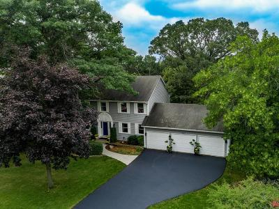Eden Prairie Single Family Home For Sale: 9882 Purgatory Road