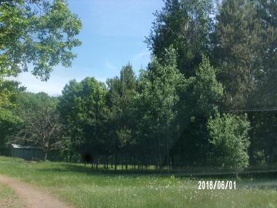 Residential Lots & Land For Sale: 2650 210th Avenue