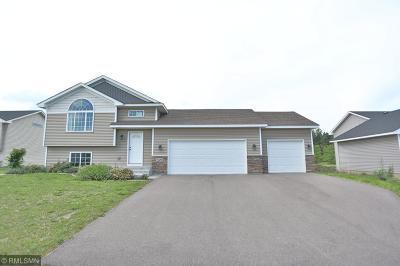 Cambridge Single Family Home For Sale: 1320 18th Ave. SE