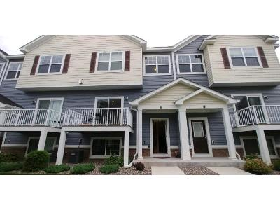 Chanhassen Condo/Townhouse For Sale: 9585 Madison Drive #2