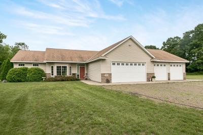 Sherburne County Single Family Home For Sale: 31665 172nd Street