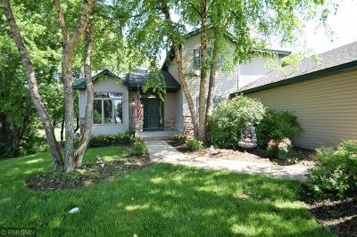 Ham Lake Single Family Home For Sale: 15941 Madison Street NE