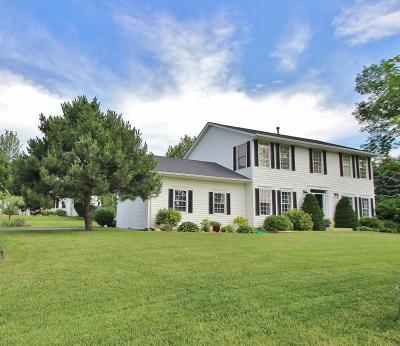 Lakeville Single Family Home For Sale: 17093 Isleton Avenue