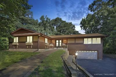 Elk River Single Family Home For Sale: 9905 209th Avenue NW