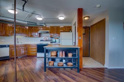 Minneapolis Condo/Townhouse For Sale: 20 2nd Street NE #P1702